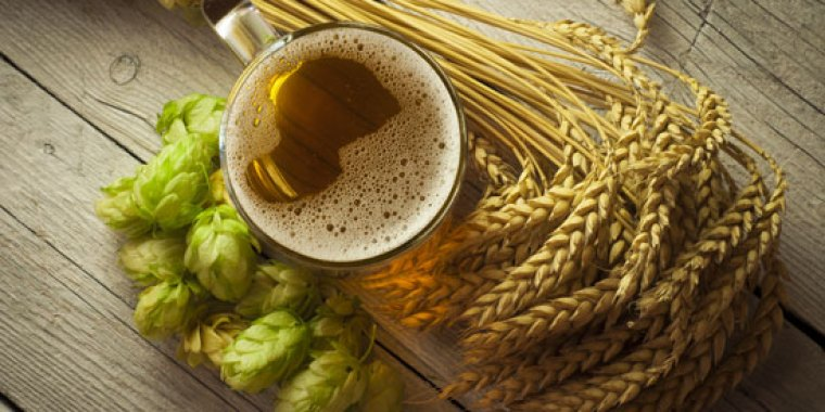 Wheat, hops and a glass of beer