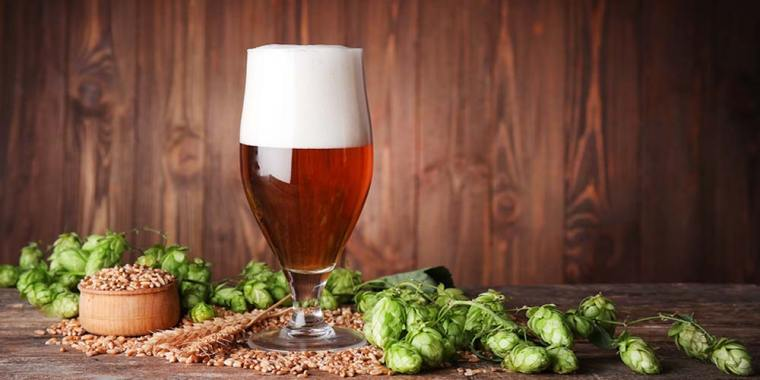 A glass of beer with a background of hops and grains in a bowl