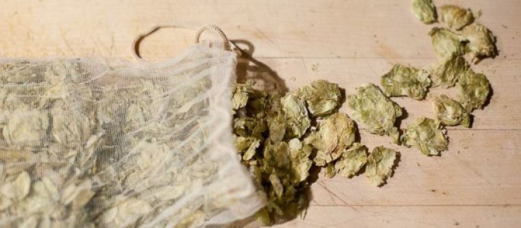 A muslin bag of dry hops for beer brewing.