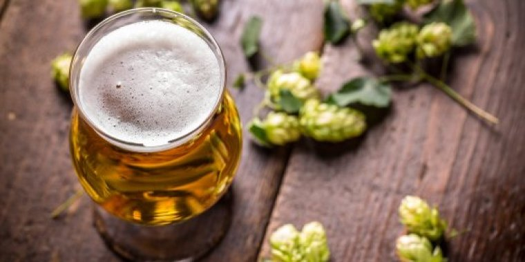 Hops and a glass of beer
