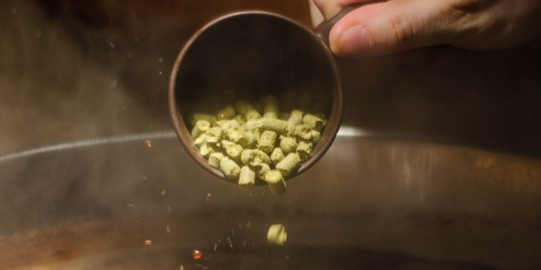 Adding a cup of hop pellets in brewing beer