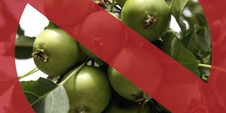 Green apples with a red crossed circle sign.