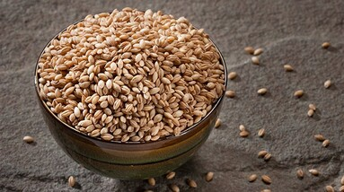 A bowl of wheat grain on a table