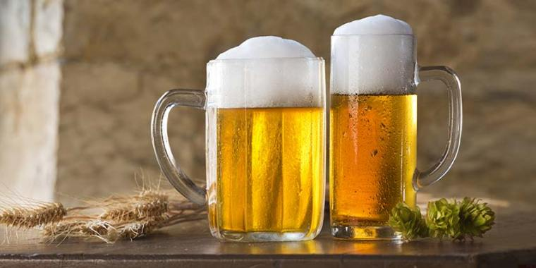 Two mugs of beer with foam on top on a table with wheat and couple of hop flowers.