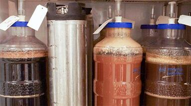 Different types of fermenters for beer brewing.