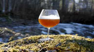 A glass of raw ale beer placed on a mound of grass near a forest