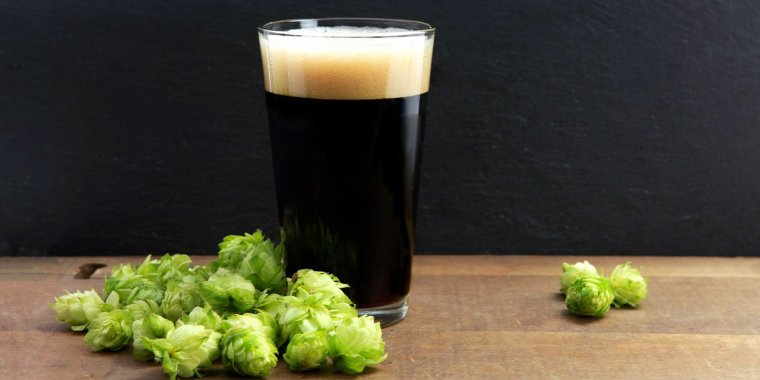 A glass of dark stout beer surrounded by hop flowers.
