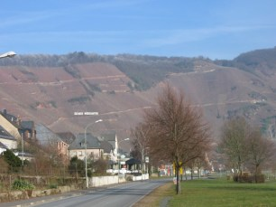 The south-facing slopes above Ürzig