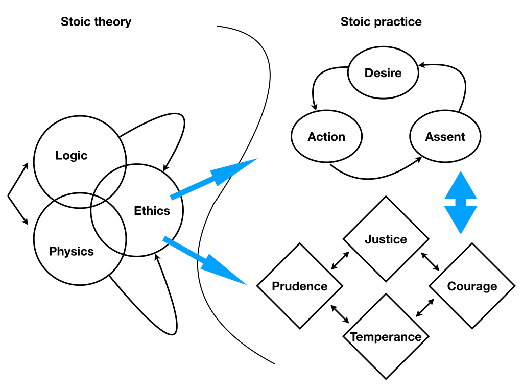 Disciplines Fields And Virtues The Full Stoic System In