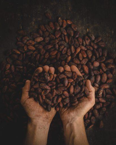 Cacao concurrence la bière