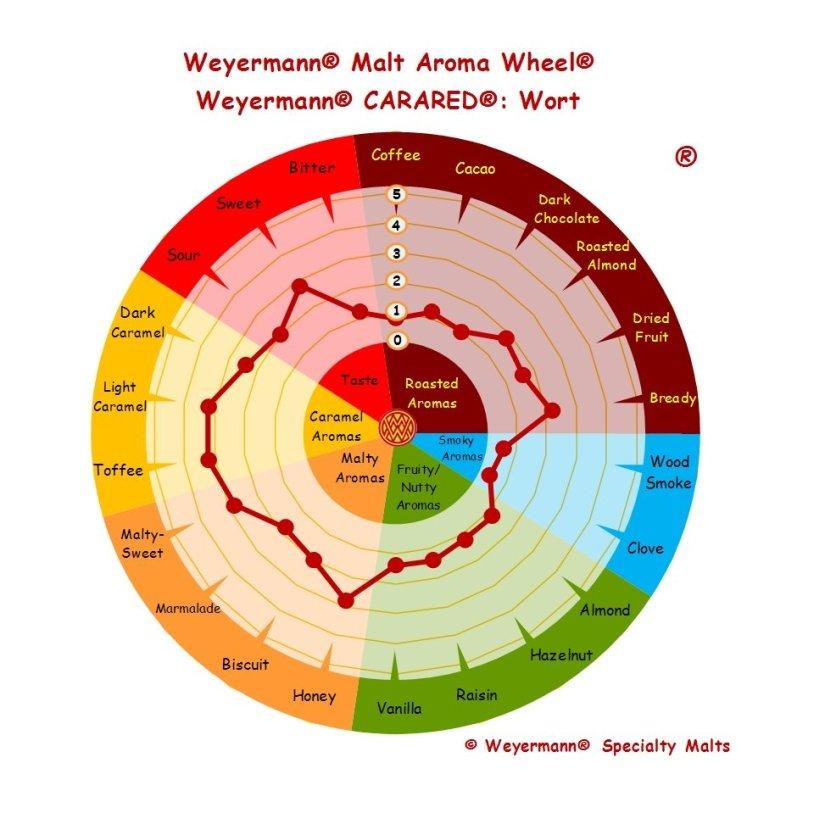 Profil aromatique Malt Carared