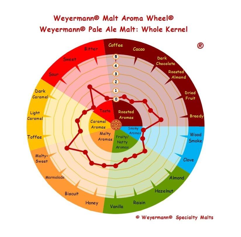Profil aromatique Malt Pale Ale WHole Kernel