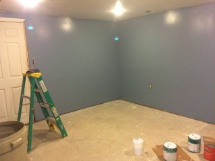 Pain Cave Remodel - Painted 2