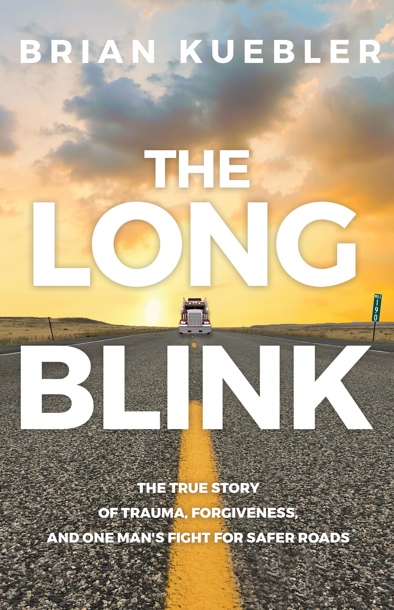 the long blink book cover brian kuebler author