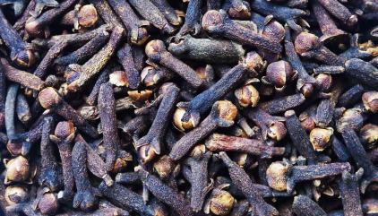 Magical Herb of the Week: Nutmeg - BrianaDragon Creations