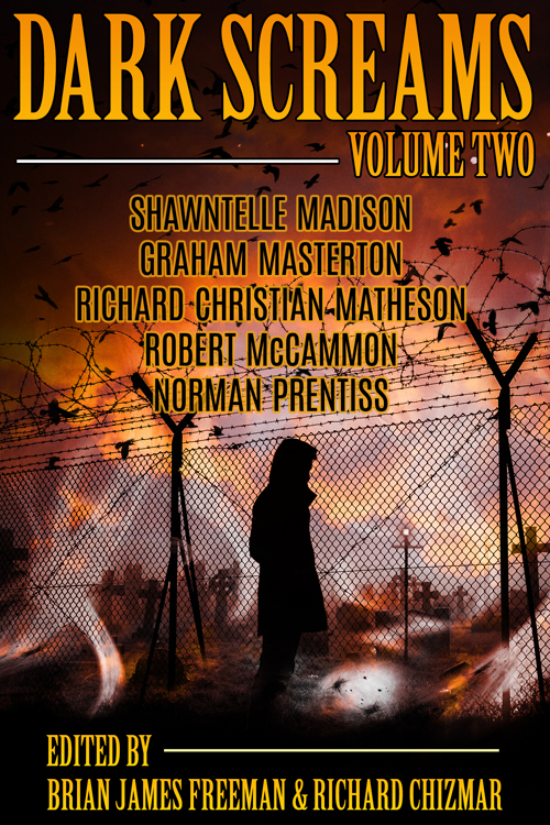 Dark Screams Volume Two eBook