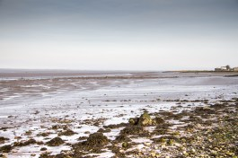 The Solway Estuary