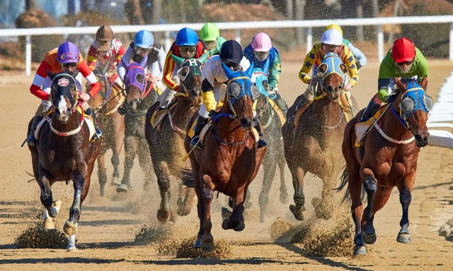 Your Career Is Like Betting on Horses | Brian Medavoy