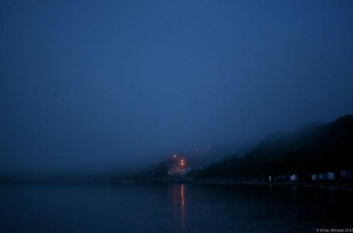 Mist fell like blankets, making for some cool opportunities