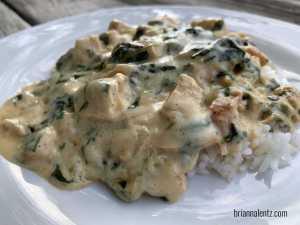 Chicken and Spinach Gravy Main Photo