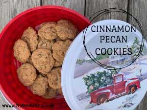 Cinnamon Pecan Cookies Img 1