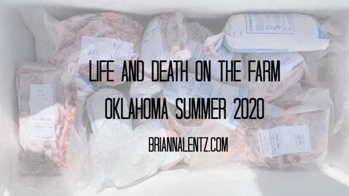 Life and Death on the Farm |Oklahoma Summer 2020