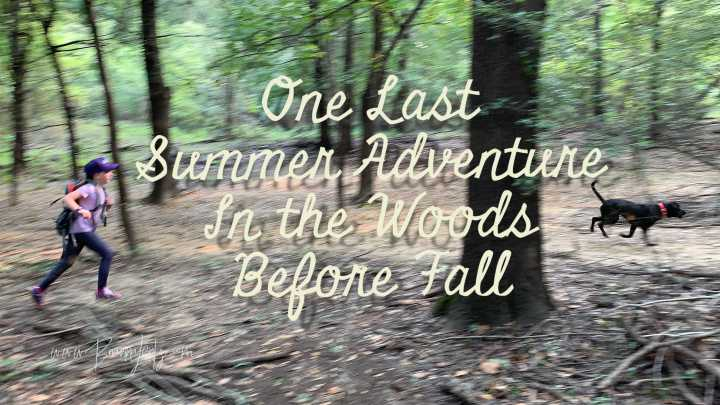 One Last Summer Adventure Through The Woods Before Fall