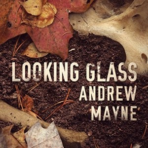 Looking Glass by Andrew Mayne (Narrated by Will Damron)