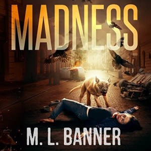 Madness (Madness Chronicles #1) by M.L. Banner (Narrated by Gary Tiedemann)