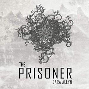 The Prisoner by Sara Allyn