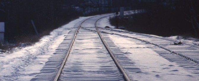 DAILY POST: Making Tracks