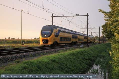 NS emu sunset_Berkel Enschot, Netherlands. August 2014.