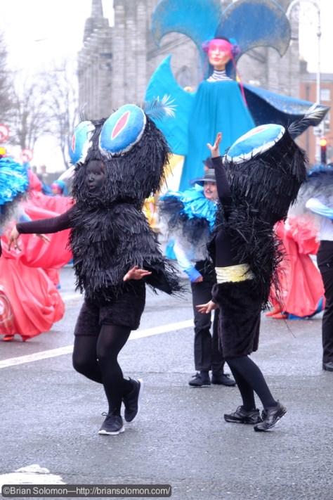 Dancing-bugs_DSCF3477