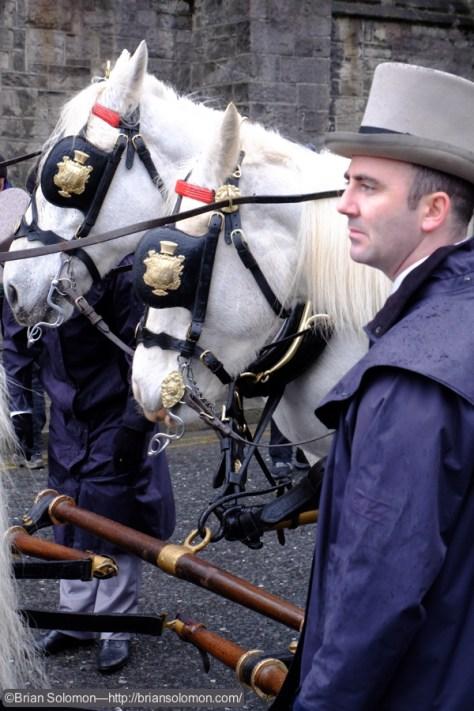 Horses_w_carriage_DSCF2781