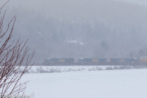 The snow adds depth, but to keep the image from become purely abstract I opted to include the bush at the left. The roar of the train filled the valley.
