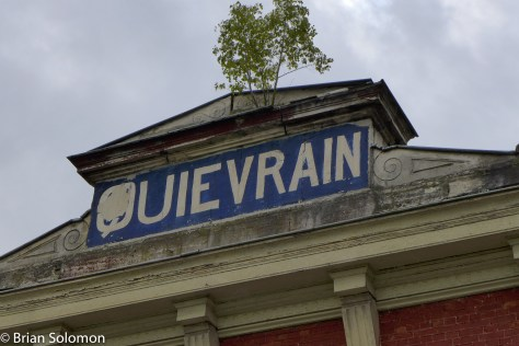 The tree growing out of the roof of the old station is indicative the sad state of the railway here.