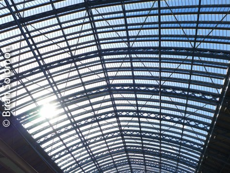 Morning sun filters through the skylights.