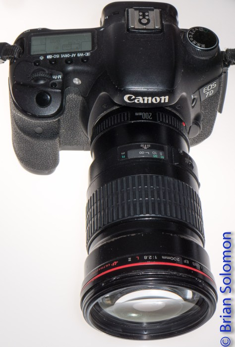 This Canon EOS 7D has served me well since 2010. It is seen here with a prime 200mm lens. These days I only use this camera occasionally, but it still works as well as the day I bought it.