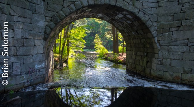 Hidden Treasure: 19th Century Stone Arch over Stony Brook.