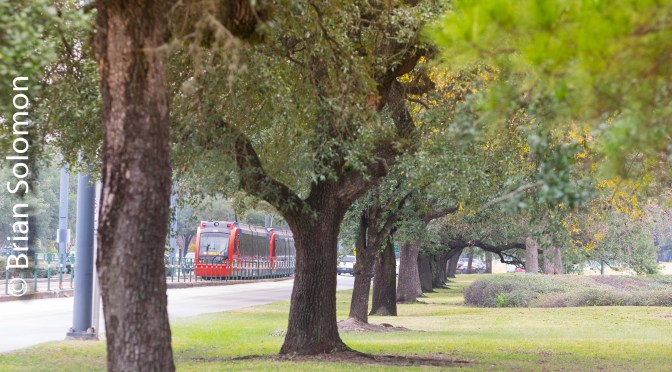 Metro Light Rail at Hermann Park.