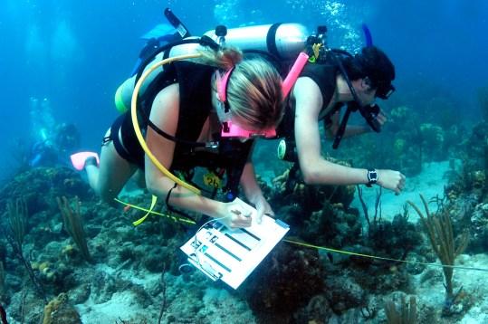 Marine-Biology-Program