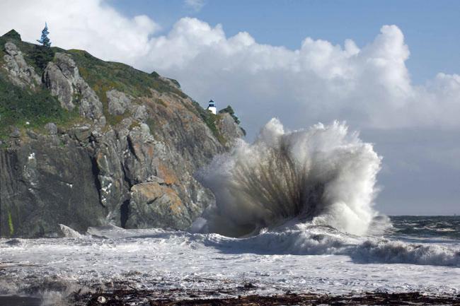Trinidad-Wave
