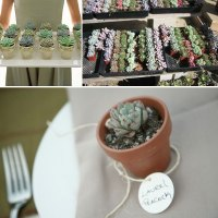 March Wedding Series: Eco-Friendly and Fun Favors!