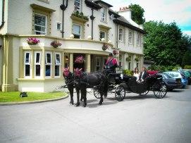 wedding-coach-horses800-49