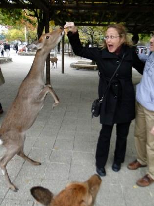 Danelle-Deer