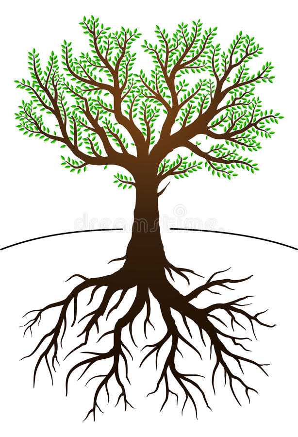tree-its-roots-illustration-green-leaves
