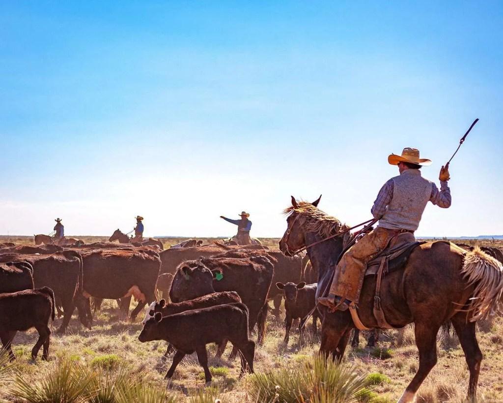 smith ranch - 050621-1127-2