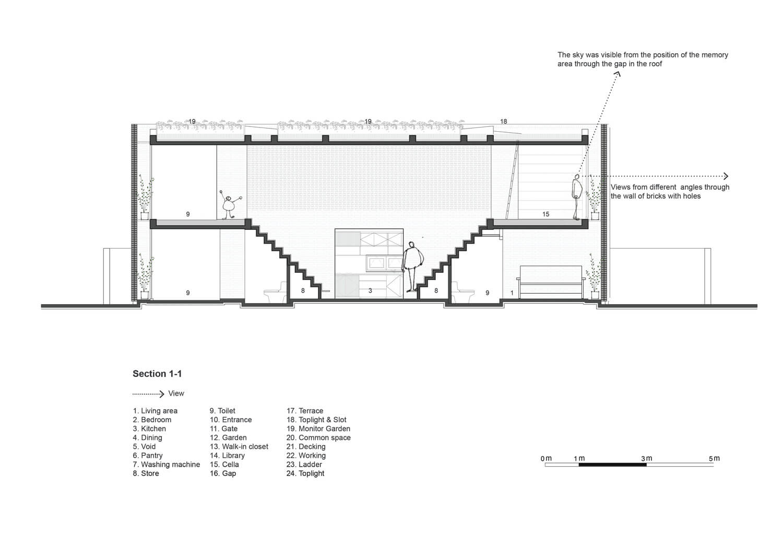Termitary House Tropical Space
