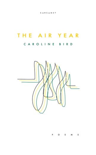 The air year - Caroline Bird