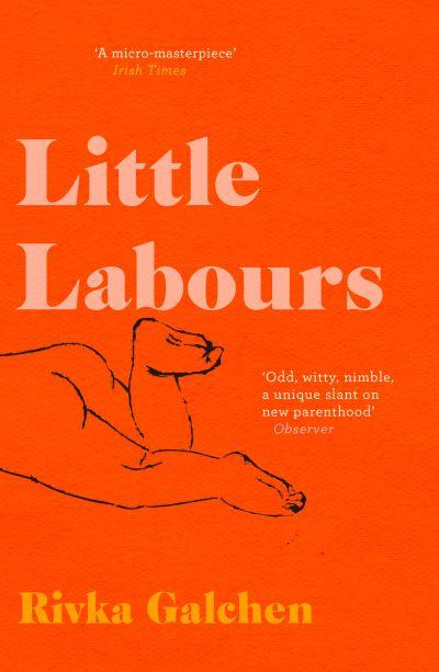 Little Labours - Rivka Galchen